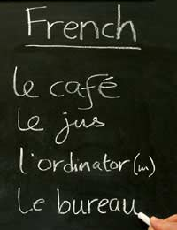 French French Dictionary Learn French